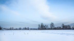 Paisagem panorâmico do inverno com campo de neve no campo e árvores no horizonte Fotografia de Stock Royalty Free