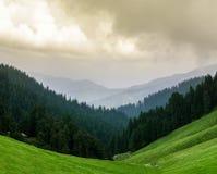 Paisagem panorâmico do vale de Janjehli, Himalayas fotos de stock royalty free