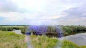 Paisagem Panorama da natureza com rio, estrada video estoque