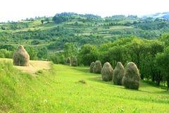 Paisagem pastoral (Maramures, Romania) Foto de Stock