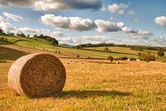 Paisagem perfeita da colheita Foto de Stock Royalty Free