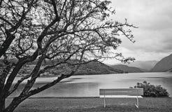 Paisagem preto e branco Fotos de Stock Royalty Free