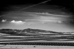 Paisagem preto e branco Fotografia de Stock