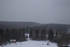 Paisagem preto e branco do inverno Fotografia de Stock