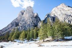 Paisagem rochosa da montanha com a floresta e neve de madeira do abeto Ortisei, Italy Fotos de Stock