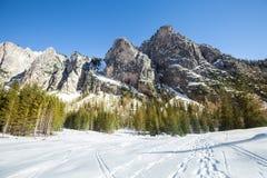 Paisagem rochosa da montanha com a floresta e neve de madeira do abeto Ortisei, Italy foto de stock royalty free