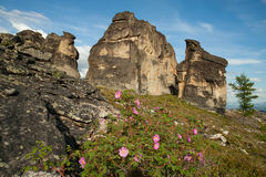 Paisagem rochosa nas montanhas fotografia de stock