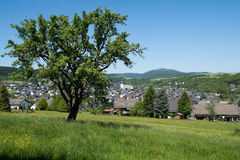 Paisagem Rothaargebrige, Alemanha Fotografia de Stock