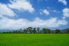 Paisagem rural. Imagens de Stock Royalty Free