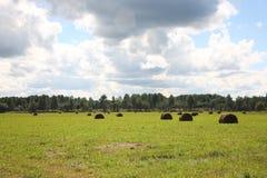 Paisagem rural Foto de Stock
