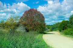 Paisagem rural bonita Imagens de Stock Royalty Free