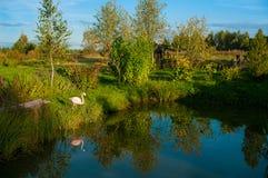 Paisagem rural bonita Imagens de Stock