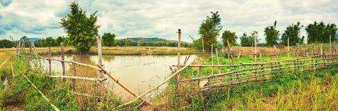 Paisagem rural bonita, lagoa no primeiro plano laos Panoram Fotografia de Stock Royalty Free