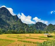 Paisagem rural bonita Vang Vieng, Laos Fotografia de Stock