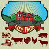 Paisagem rural colorida brilhante com grupo de ícones Imagem de Stock Royalty Free