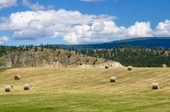 Paisagem rural com as montanhas no fundo e no céu azul Fotografia de Stock Royalty Free