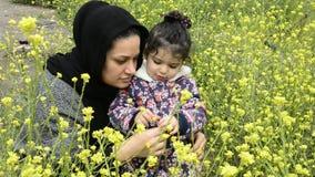 Paisagem rural com as plantas amarelas do campo da colza ou do canola da viola??o para a energia verde vídeos de arquivo