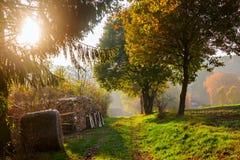Paisagem rural com cores do outono foto de stock