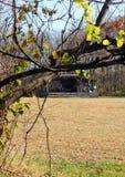 Paisagem rural com fase rústica Imagens de Stock