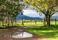 Paisagem rural com o sol que quebra embora após a chuva com clo Foto de Stock