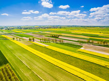 Paisagem rural com opinião do olho do ` s do pássaro Estrada que corre através dos campos coloridos Imagem de Stock Royalty Free