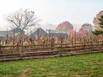 Paisagem rural da exploração agrícola Imagens de Stock Royalty Free