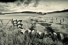 Paisagem rural da mola com parede de pedra, Scotland imagens de stock