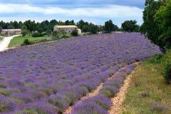 Paisagem rural de Provence foto de stock