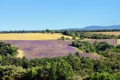 Paisagem rural de Provence Fotos de Stock