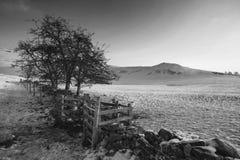 Paisagem rural do inverno coberto de neve bonito do nascer do sol no monochr Fotografia de Stock Royalty Free