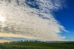 Paisagem rural do inverno Entre Apulia e Basilicata: bosque verde-oliva no monte Italy Campo montanhoso dominado por nuvens imagens de stock royalty free
