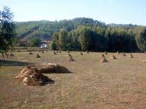 A paisagem rural do mediterrâneo Foto de Stock Royalty Free