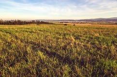 Paisagem rural do verão Imagem de Stock Royalty Free