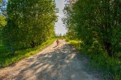 Paisagem rural do verão com crianças Imagens de Stock