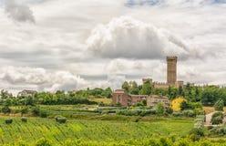 Paisagem rural do verão com vinhedos e campos verde-oliva perto de Porto Recanati na região de Marche, Itália Imagens de Stock