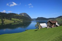 Paisagem rural do verão no lago Waegital Imagens de Stock Royalty Free