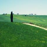 Paisagem rural em Toscana Imagem de Stock