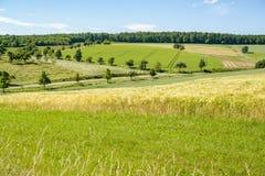Paisagem rural ensolarada imagens de stock