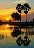 Paisagem rural maravilhosa do nascer do sol de Vietname Fotografia de Stock Royalty Free