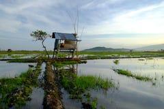 Paisagem rural panorâmico bonita na manhã no campo de almofada Imagens de Stock