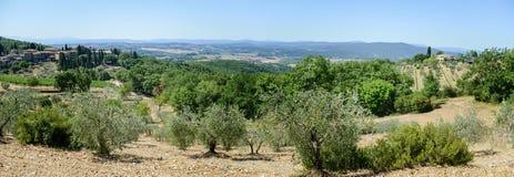 Paisagem rural perto de Castellina no Chianti em Toscânia fotografia de stock royalty free