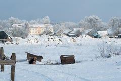 Paisagem rural, vida da vila, cães na neve, trator azul, Fotografia de Stock