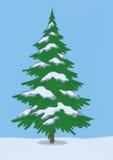 Paisagem, árvore de abeto do Natal Foto de Stock Royalty Free