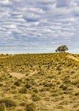 Paisagem Santa Cruz do Patagonia, Argentina Foto de Stock