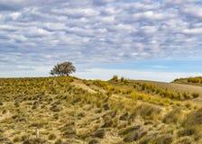 Paisagem Santa Cruz do Patagonia, Argentina Imagem de Stock Royalty Free