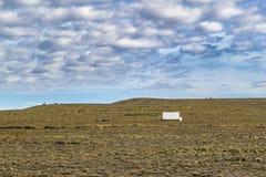 Paisagem Santa Cruz do Patagonia, Argentina Fotos de Stock Royalty Free