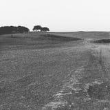 Paisagem seca de Portugal Imagens de Stock Royalty Free