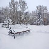 Paisagem Snow-covered no parque Fotografia de Stock Royalty Free