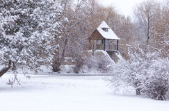 Paisagem Snow-covered no parque Imagens de Stock