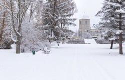 Paisagem Snow-covered no parque. Foto de Stock Royalty Free